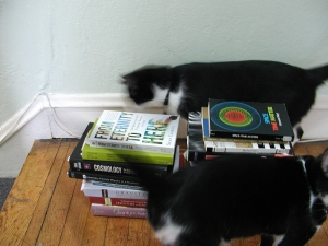My cats, Pascal and Harriet, with a few of my books that deal with the topic of relativity.